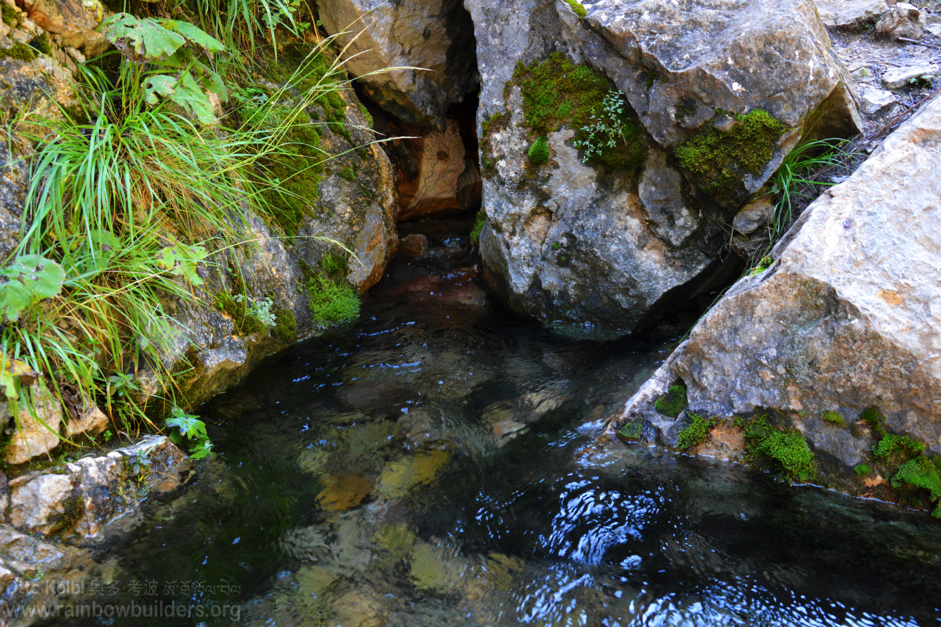 You can see the pure and clean source water flowing out between the rocks.