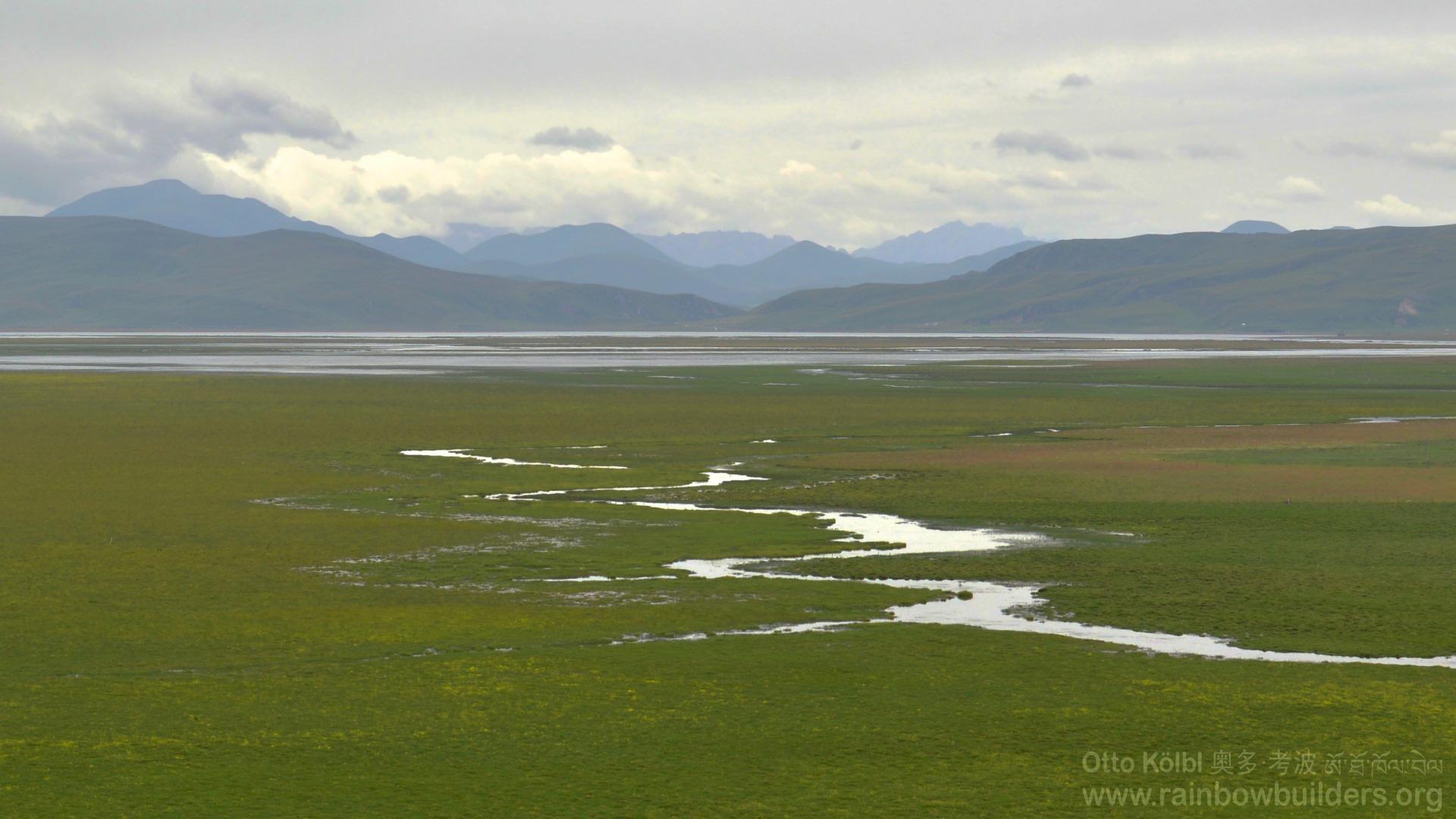 The Tibetan high plains in the rain have got a charm of their own.